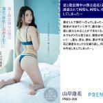 【お中元セット】S1、PREMIUMほか人気10メーカー厳選 10タイトル収録夏福袋2021お中元ギフトBOX(鶴)